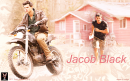 Photo de TWiLiGHT-JACO0B