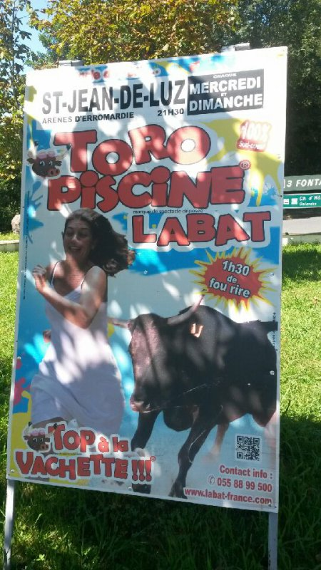 Toro piscine labat blog d 39 affiches circus 2015 for Toro piscine labat