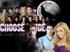 Fiction: Choose a side
