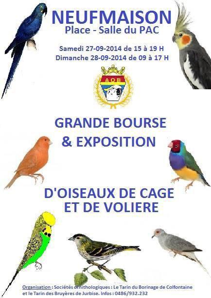 EXPOSITION DE CLUB DES TARINS DU BORINAGE ET DE JURBISE