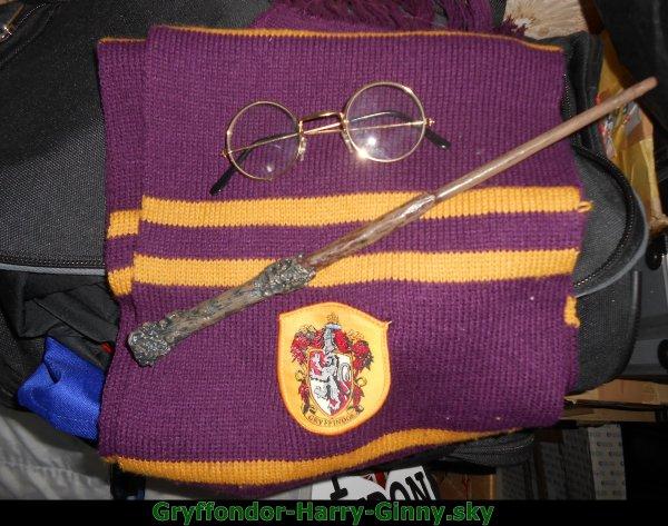 Mon futur cosplays Harry Potter