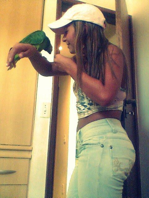Spain mon perroquet