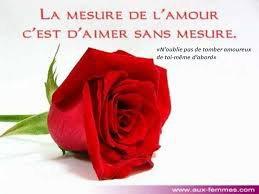 je t offre cette rose