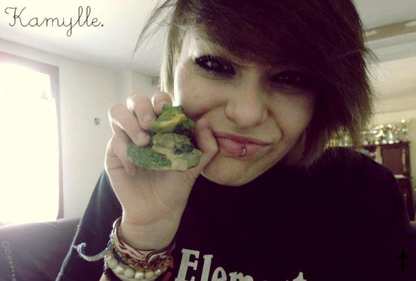 Coucou, j'aime les grenouilles.