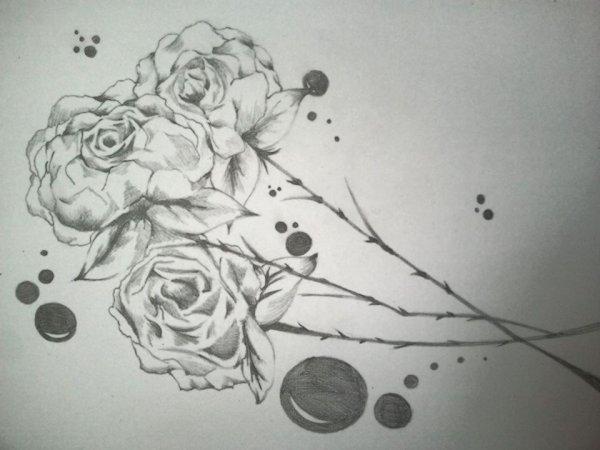 les roses du destins