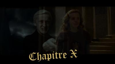 CHAPITRE X