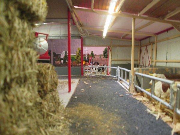 l'intérieur du hangar  accolé à la stâbule