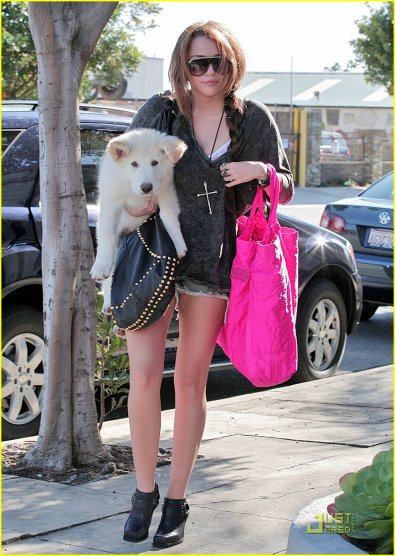 :x Miley Cyrus ; Hannah Montana !
