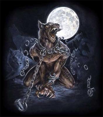 1/3 : Réintroduction du Loup en Europe Occidentale ?