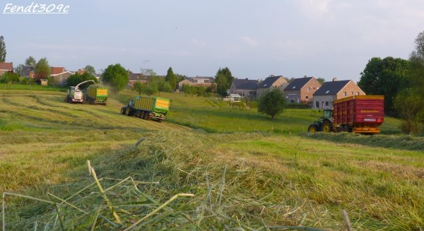 E. London à l'ensilage d'herbe !