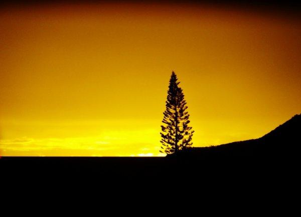 Crépuscule en Nouvelle-Calédonie