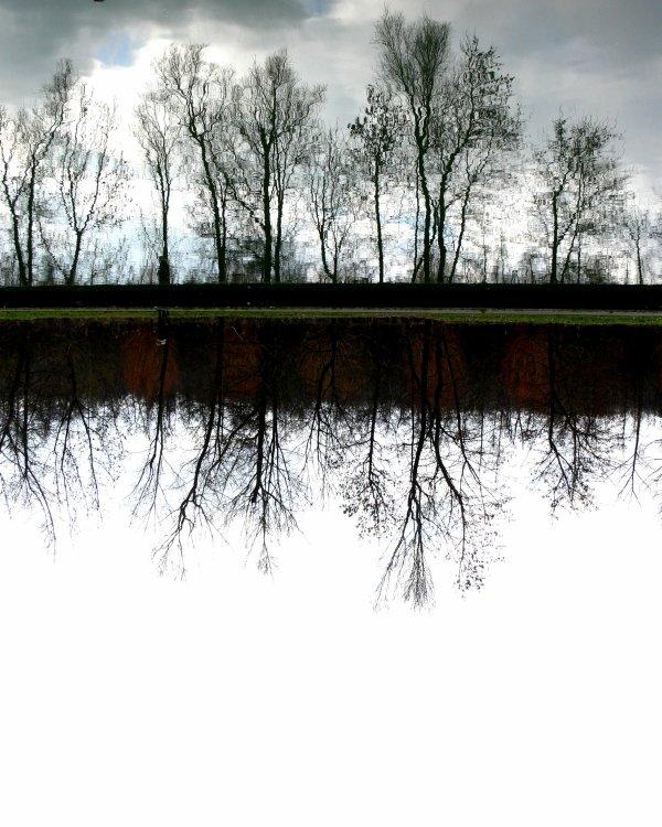 Reflet/paysage