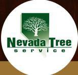Tree Trimming Services in Las Vegas can Even Save Life of your Loved Ones