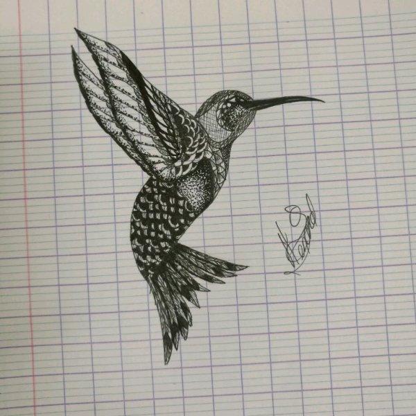 {T.A} Le colibri.