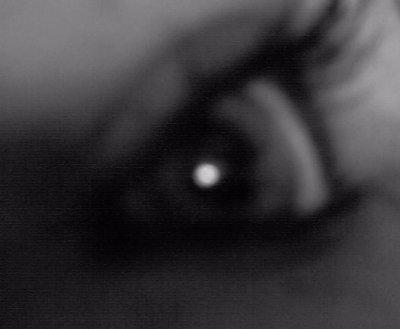 «« TOUT EST DANS LE REGARD »»