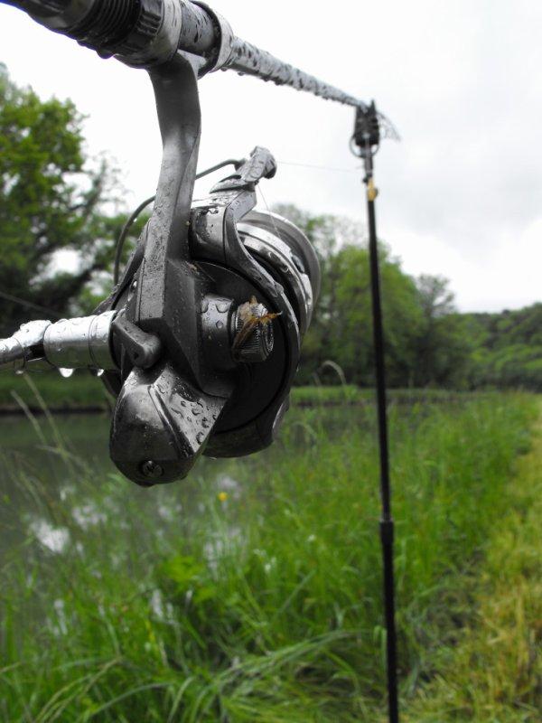 ça pêche.... .
