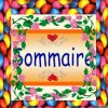 -The Sommaire~
