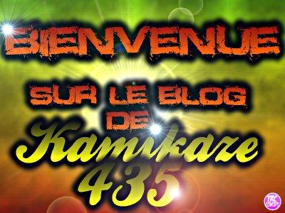 bienvenue sur le blog de kamikaz435