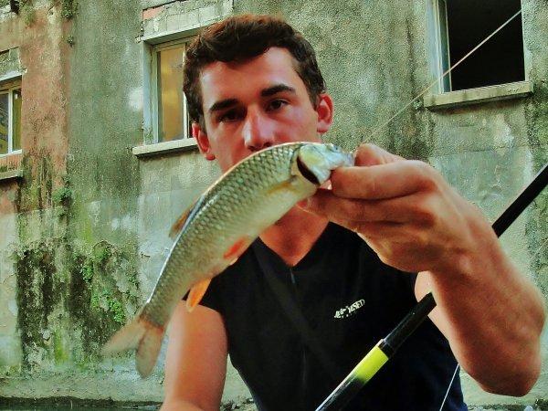 Pêche du 16 aoûte partie deux, les chevaine
