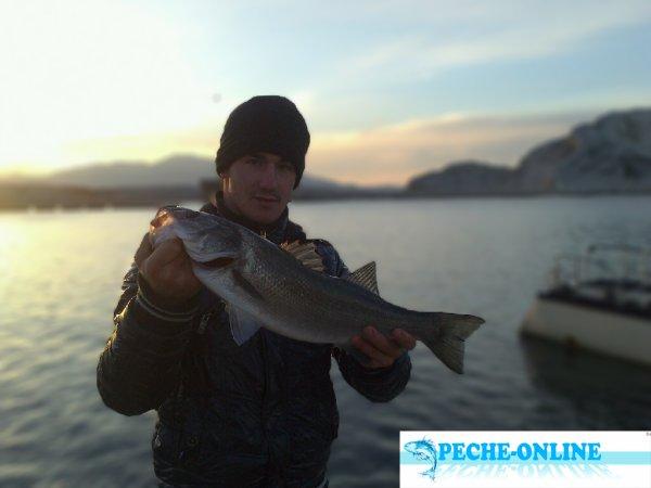 Pêche du 24 novembre 2013