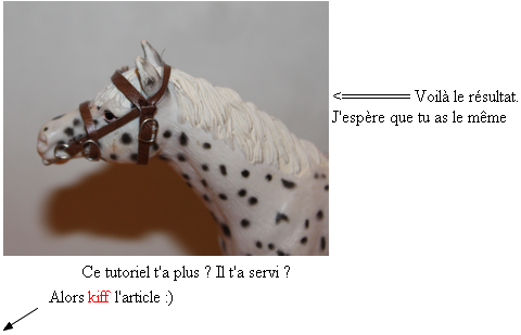 tuto 3 comment faire un filet schleich plein de tutos sur le blog. Black Bedroom Furniture Sets. Home Design Ideas