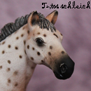 Photo de Tutos-Schleich