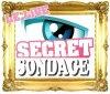 SecretSondage-skps8