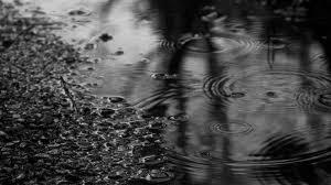 Chapitre 1 : Journée de pluie !