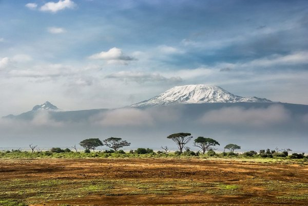 Le Kilimandjaro (Tanzanie), vu depuis le parc national d'Amboseli (Kenya)