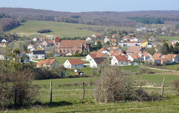 Saulnot