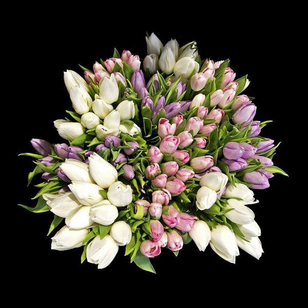 Un bouquet de tulipes.