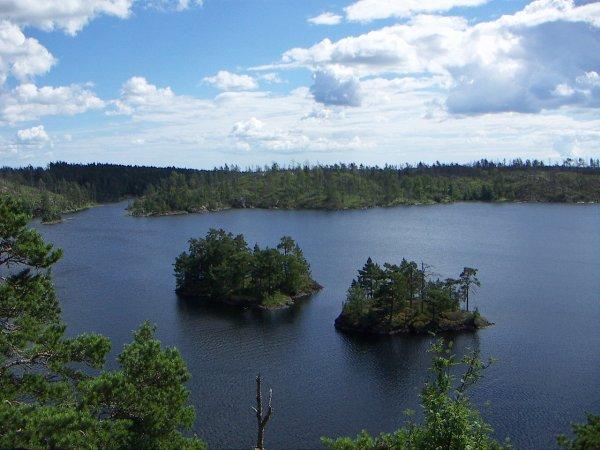 Le parc national de Tyresta