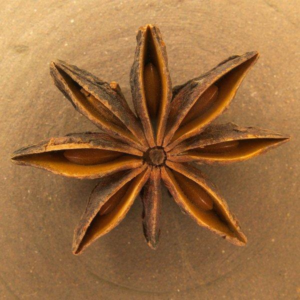 L'anis étoilé, polyfollicule séché du badianier de Chine
