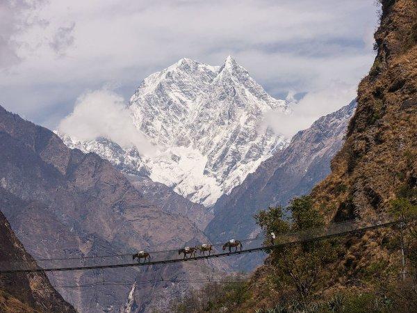 Pont de singe traversant la vallée de la Kali Gandaki, devant le Nilgiri Sud (Népal)
