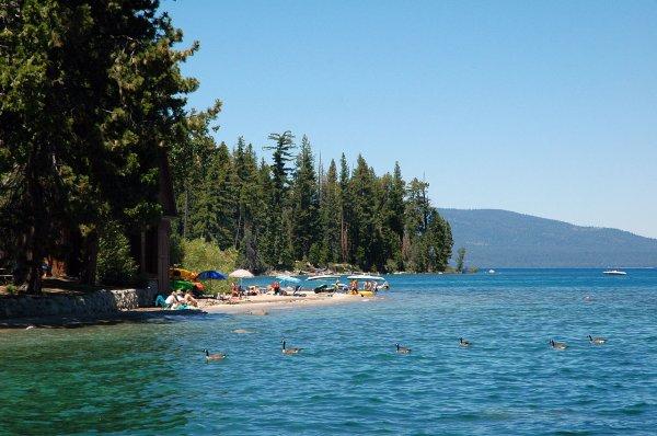 Rives du lac Tahoe, Ouest américain.