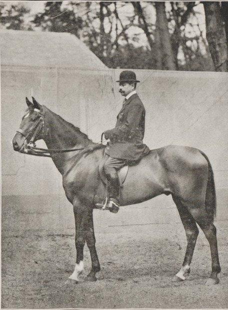 Le cheval de Corlay