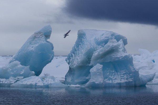 Un iceberg de l'archipel François-Joseph, en mer de Barents