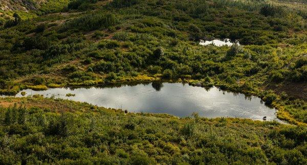 Un étang dans les montagnes Chugach, en Alaska.