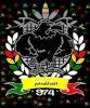 jonathan41