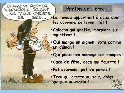 QUELQUES DICTONS BRETON POUR CETTE FIN DE JOURNEE
