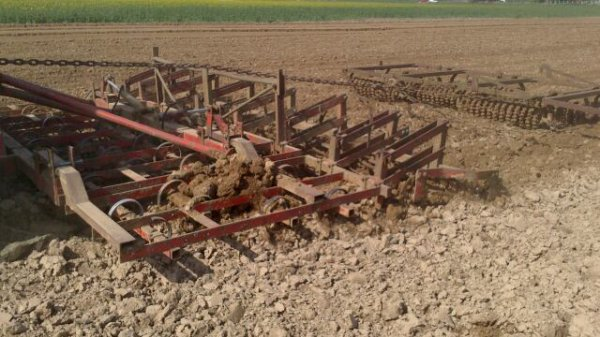 Plantation pommes de terres