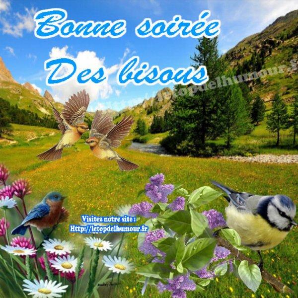 Bonne soirée à vous tous !!!