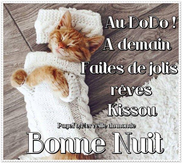 Bonjour  - Page 24 3301520900_1_3_pgf8YZGr
