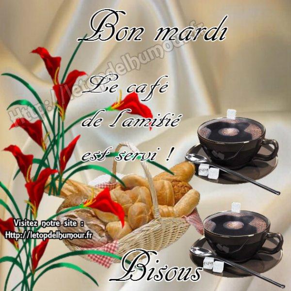 Bon Mardi à vous tous !!!