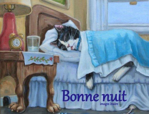 Bonne nuit à tous.