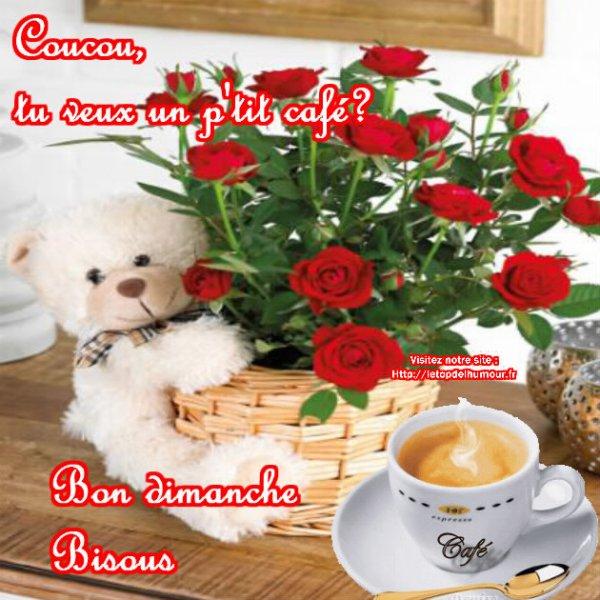 Bom Dominco (Bon dimanche), les Ami(e)s