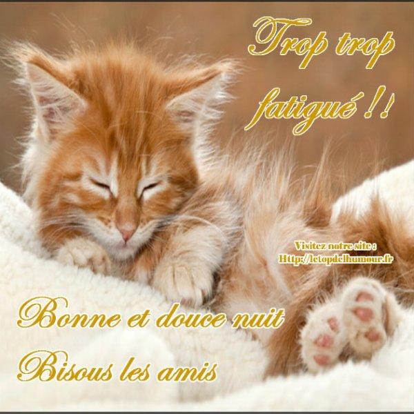 Bonne soirée et bon dimanche à vous !!!