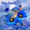 Bonjour les Ami(e)s !!!