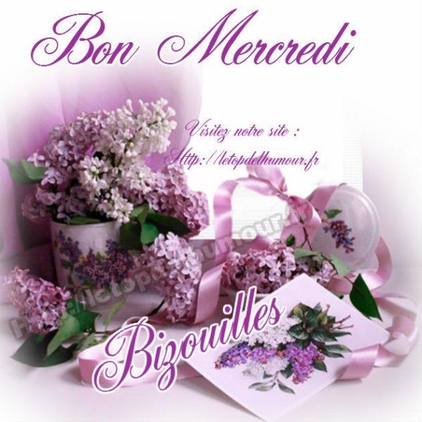 Bonjour et bon mercredi à tous ....