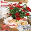 Bonjour à vous tous !!!